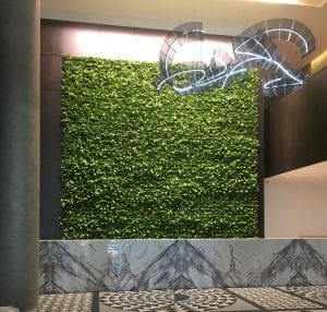HOtel X receiption desk with living wall